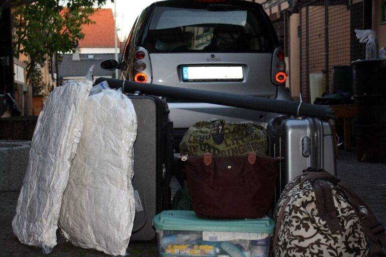 Everything You Need for Smart Car Space Organization