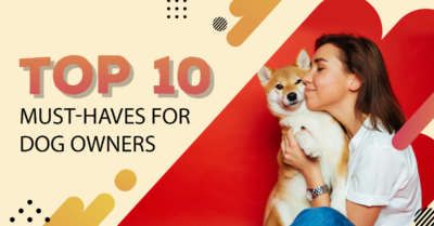Top 10 Must-Haves For Dog Owners